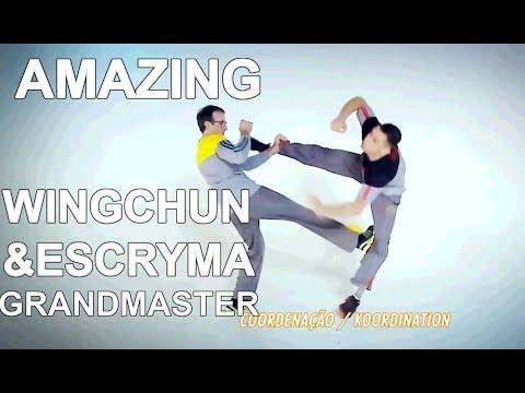 People are awesome 2017 real wing chun and escryma grandmaster