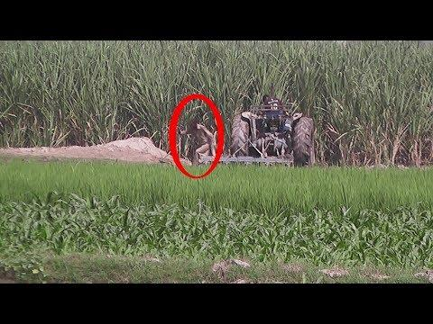 People Are Awesome 2017 (Most AMAZING VIDEO) Pakistan Punjab Culture   By Bataproduction