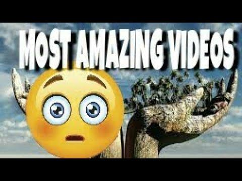 ????Amazing videos of the world(people are awesome) you need to see,????