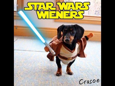 Star Wars Wieners - Crusoe The Dachshund Plays Star Wars