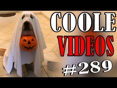 Coole Videos #289 || ✪ Stern DuTube