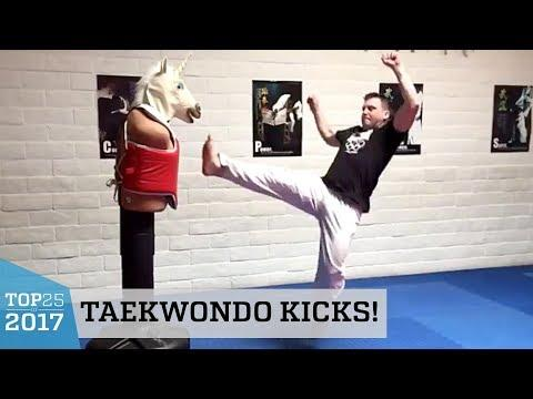 Amazing Taekwondo Kicks Training! | Top 25 of 2017