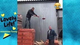 Funny Videos   Funny Fails, Funny People & Moments   EP182   Lovely Life Vines