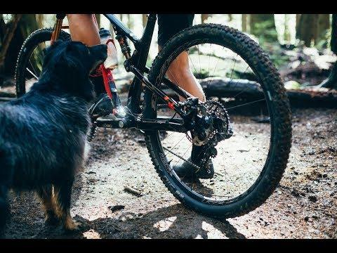 Mountain biking is awesome 2019